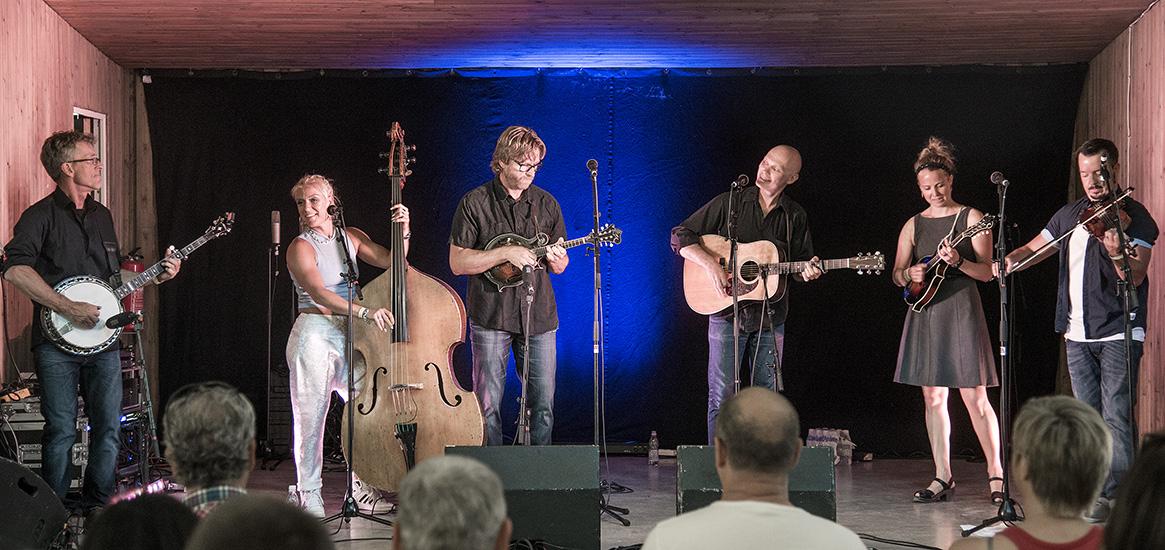 Downhill på Torsåker Bluegrass Festival