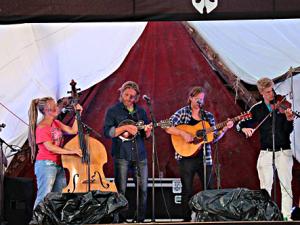 Gate Bisonfarm Wildwest Blues & Country